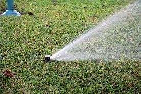 irrigação.jpg