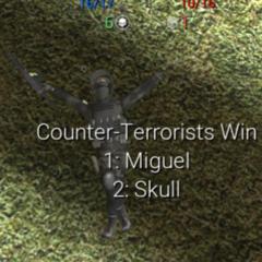Miguel 55